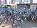 1000 vélos