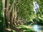 Canal du midi - Nas Zed