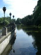 Un étang - gabrielle malewski