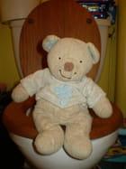 L'ours Calin fait ses besoins ! par Joele OFMAN AUDOINE sur L'Internaute