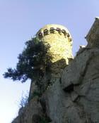 La tour prend garde - mireille simon