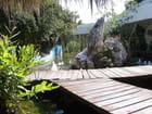 Les jardins à Cayo Coco - Jean-pierre MARRO