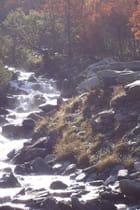 Couleurs d\'automne et torrent de montagne -