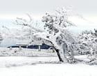 Vent et neige - Jean DETAIN