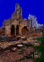 Ruines de l'Abbaye de Chaalis Oise -