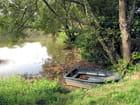 Barque au bord de l'étang - Joëlle Duval