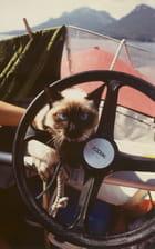 Le chat volant - PHILIPPE LEROUX