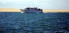 le bateau promenade le long du banc d'Arguin - Genevieve LAPOUX