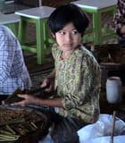 Cigarière birmane - jacques EHRMANN
