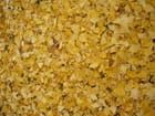 Tapis de feuilles mortes jaunes! - jacqueline laval