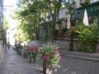 Rue fleurie des Saules - Laurent SIGONNEAU
