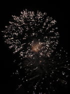 feux d'artifice - Patricia GUISLAIN