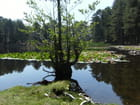 Le lac de CRENO - arlette santoni