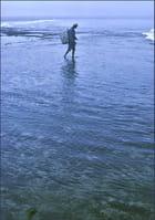 Pêcheur à pied ... - Bernard Fosse