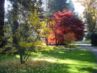 Lumière d'automne - Paul TOURLONIAS