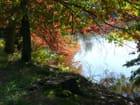 Au bord de l'eau à l'automne - Marie-Anne GERBE