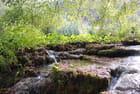 la nature sauvage des lacs de plitvice - Genevieve LAPOUX