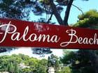 Plage Paloma Beach (1) - Jean-pierre MARRO