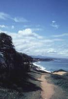 Chemin de la plage - Paul HELLA