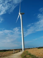 Thonnay-Boutonne chemin éolienne - Elsa MARTINELLI