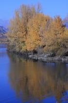 Automne au bord d'un lac - GUY MATHERON