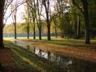 Lumière d'automne - Marie-France Brusseau