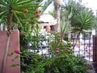 Paysage de Maroc - larisa caudron