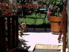 Notre chien - madeleine vigan   et  jpaul  chudeau