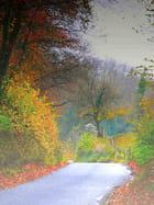 Route d'automne - jacques bardou