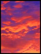 Ciel d'automne - Joelle LE COZ