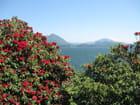 Lac Majeur - Anaelle Martignoni