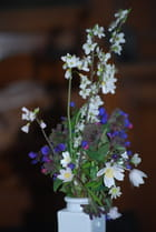 petit bouquets de fleurs sauvages - Genevieve LAPOUX