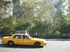 Taxi - gabrielle malewski