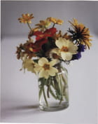 Petit bouquet printanier - luc rocheux