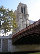 Le Pont Au Double et Notre Dame. - ALAIN ROY