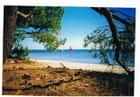 Tranquillité du lac - Genevieve LAPOUX