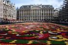 Tapis de fleurs de Bruxelles - Claude Malet