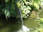 Jets d eau - Patrice PLANTUREUX