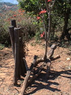 Fétiche à la sortie d'un village - jacques EHRMANN