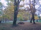 Aire de pique nique en automne - Genevieve LAPOUX