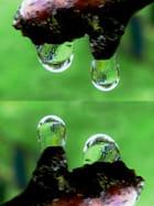 Reflet du banc dans les gouttes d'eau par Jacqueline DUBOIS sur L'Internaute