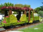 Train de verdure par Danielle Garaski sur L'Internaute