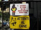 Attention au chien ! - Anaelle Martignoni