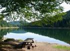 Lac des corbeaux par Francine ANCEL sur L'Internaute