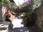 Ruelle de Collioure - marie christine lanau