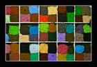 Joie des couleurs - Babeth Bonnereau