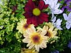 Bouquet du Printemps - Ana Ribeiro