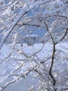 Campagne sous la neige par Nicole TREVEL sur L'Internaute