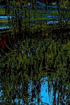 Bassin de bercy - Brigitte SINDING