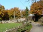 Petite route à  l'automne - Marie-Anne GERBE